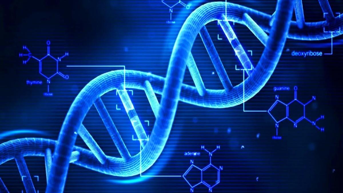 古埃及與古代DNA(上)──一場美麗的錯誤