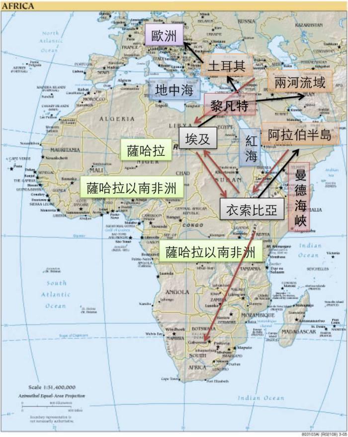 這裡土耳其、兩河流域、黎凡特、阿拉伯半島合稱「中東」。 黑色箭頭是智人當初離開非洲,前進中東的可能方向。 一些中東的農夫後來移民歐洲,成為後來歐洲人的祖先之一。 紅色箭頭是中東族群後來進入非洲的可能方向。(地圖來源:d-rych;標示作者繪製)